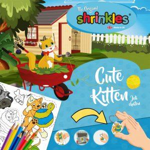 Shrinkles kitten (1)