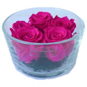 Gestabiliseerde rozen in cilinderglas 15 x 8cm fuchsia