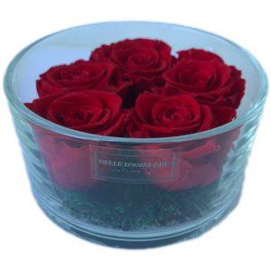 Gestabiliseerde rozen in cilinderglas 15 x 8cm rood