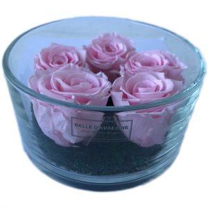 Gestabiliseerde rozen in cilinderglas 15 x 8cm roze