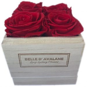 gestabiliseerde rozen in houten doosje 10x10x10cm rood