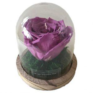 oud roze 1 gestabiliseerde roos bruine voet