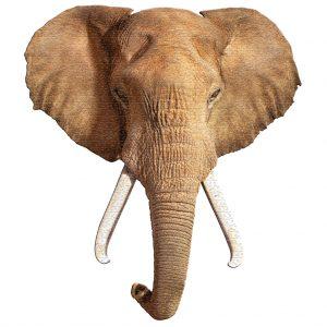 Madd Capp puzzel olifant (1)
