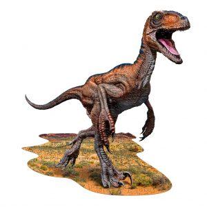 Raptor 100 stukjes (5)
