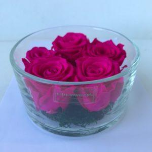 Gestabiliseerde rozen